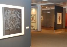 מוזיאון טיקוטין לאמנות יפנית