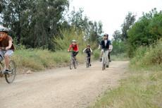 סיורי אופניים בפארק