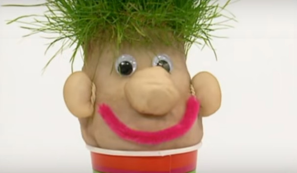 הכנת ראש דשא