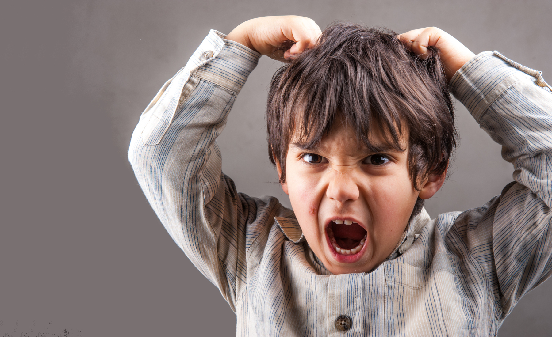 וויסות רגשי - התפרצויות זעם של ילדים